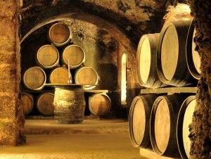 Cata de vinos de nuestra bodega