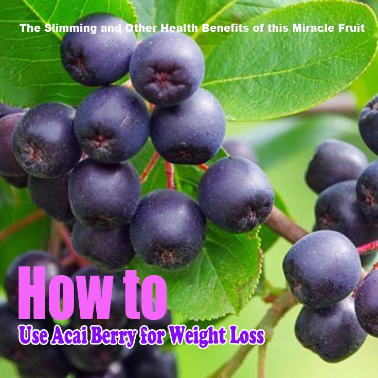 How to Use Acai Berry for Weight Loss: The Slimming and Other Health Benefits of this Miracle Fruit