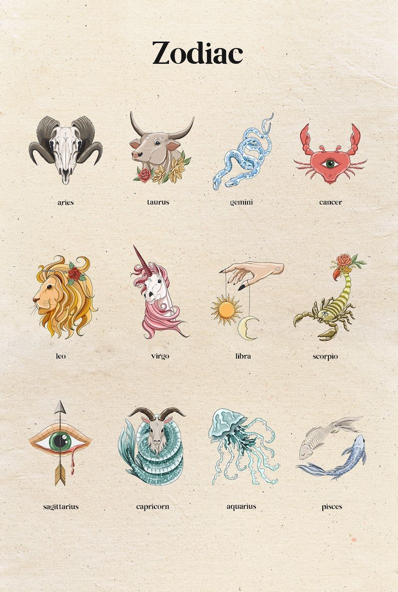 Astrology clipart, zodiac signs clipart, constella