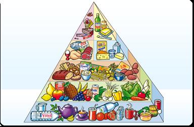 die ernährungspyramide - als download verfügbar