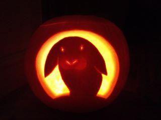 pumpkin template bunny  Jack-o-lantern bunny in 7 | Rabbit halloween, Halloween ...