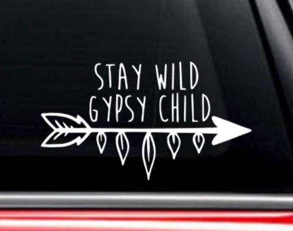 """7/"""" YOU JUST GOT PASSED BY A GIRL VINYL DECAL GRAPHIC STICKER CAR WINDOW FLOWER"""