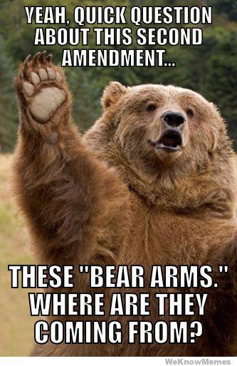 Concerned bear