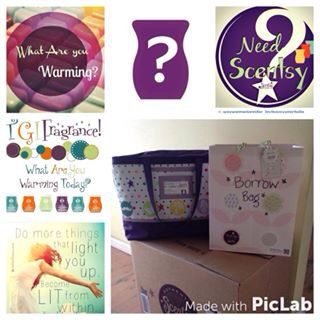 Do You Know What Scentsy Is Maybe A Borrow Bag Will Enlighten You Scentsy Fragrance Bags