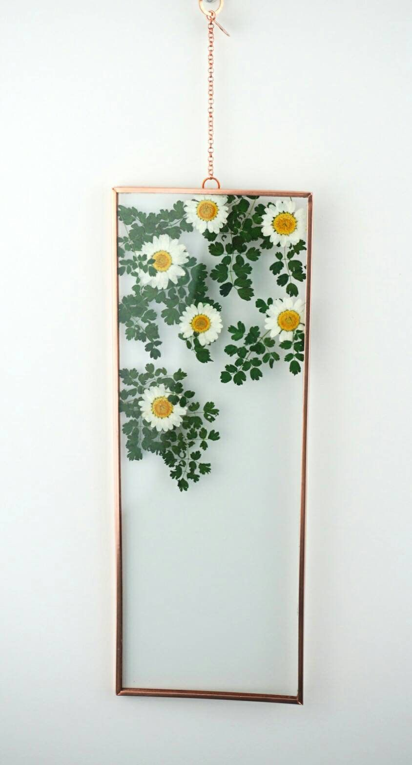 Photo of 4″ x 11″ Copper Double Glass Pressed white Daisies Wall Hanging