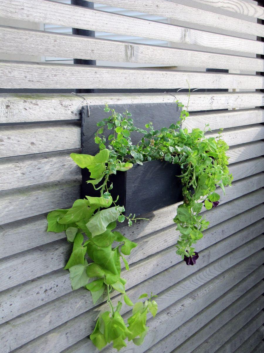 Blog objet deco jardin jardini re murale jardini res Jardinieres exterieures
