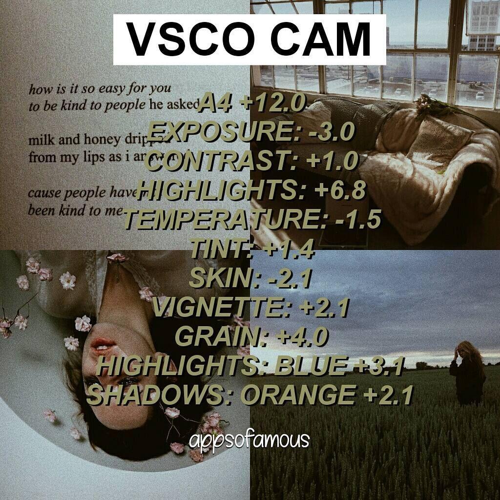 VSCO Cam photo edit for Vintage filter // Works best in