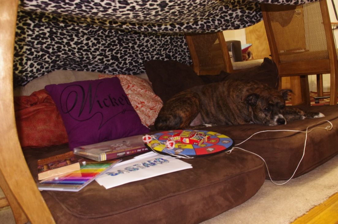 Not Adulting, 101: How to Escape Adultdom   Blanket fort ...
