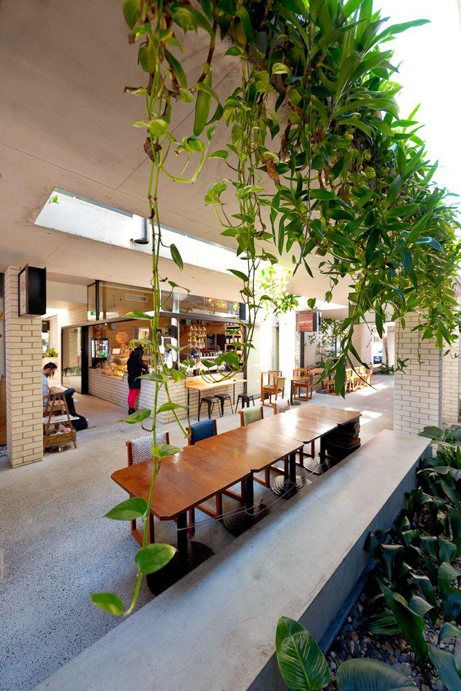 Green Room Garden Design: PlantUp's Creative Green Design At James Street Laneway