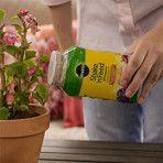 Magasinez dans le centre de jardinage de Lowe pour tous vos besoins de jardinage
