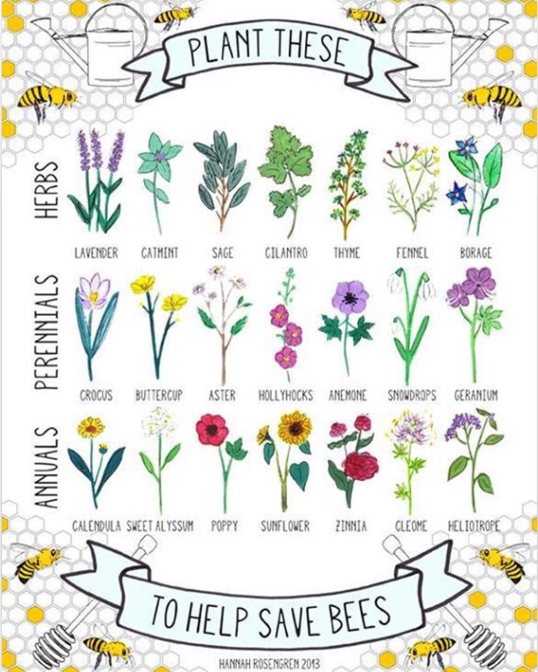 Plant these to help save bees herbs perennials and annuals thanks plant these to help save bees herbs perennials and annuals thanks hannahrosengren izmirmasajfo