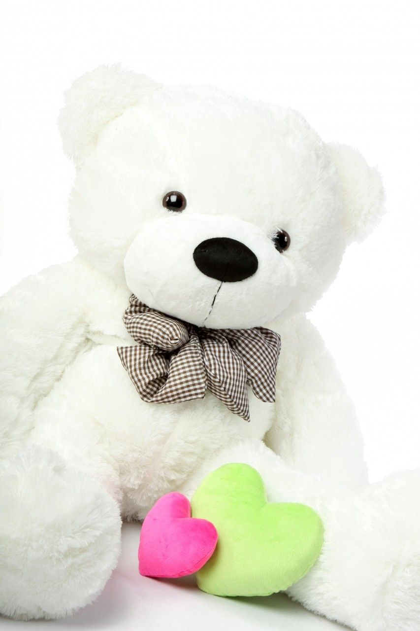 Coco Cuddles Huggable Plush White Teddy Bear 46in Teddy Bear Wallpaper White Teddy Bear Teddy Bear Pictures