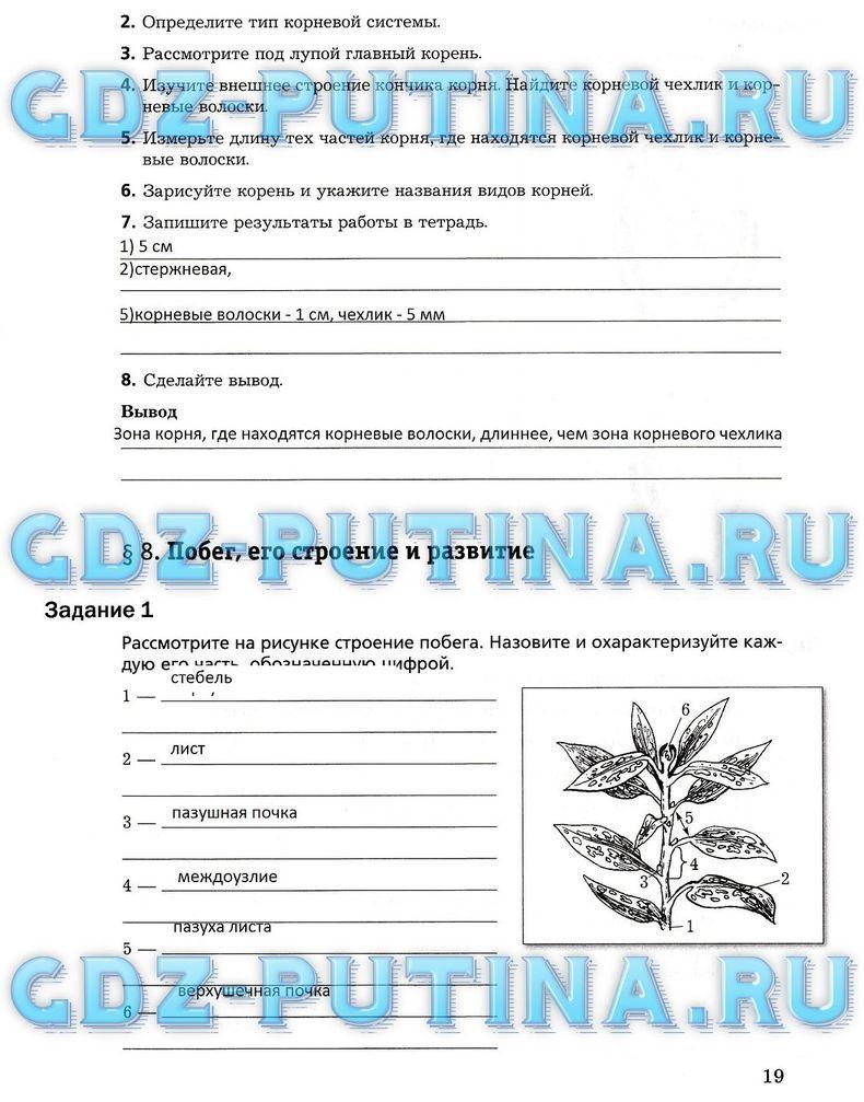 Спиши.ру биология 6 класс пономарева корнилова кучменко рабочая тетрадь