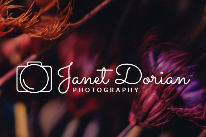 Simple Elegant Line Art : This line art photography logo is a simple yet elegant for