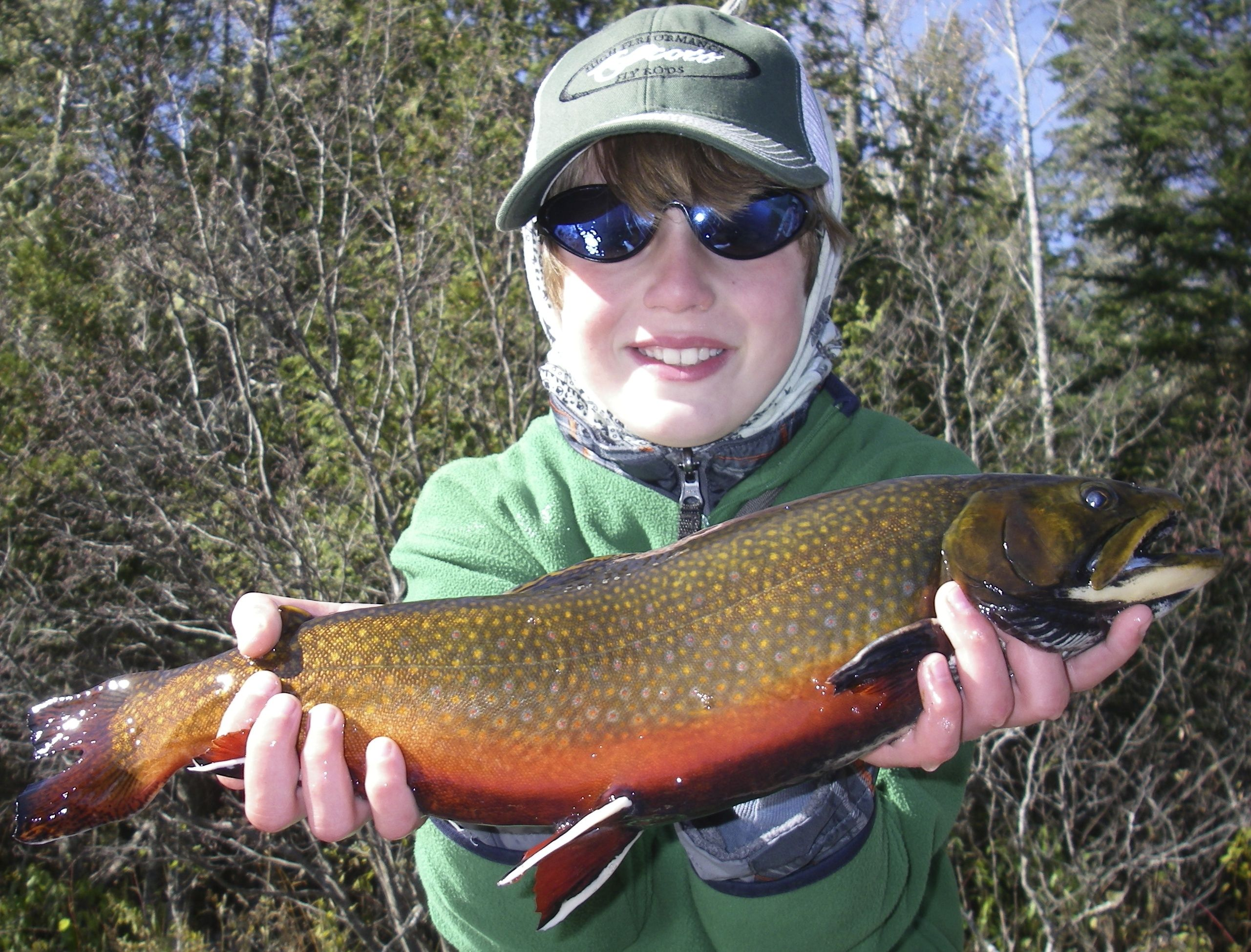 Maine Brook Trout Brook Trout Fly Fishing Trout