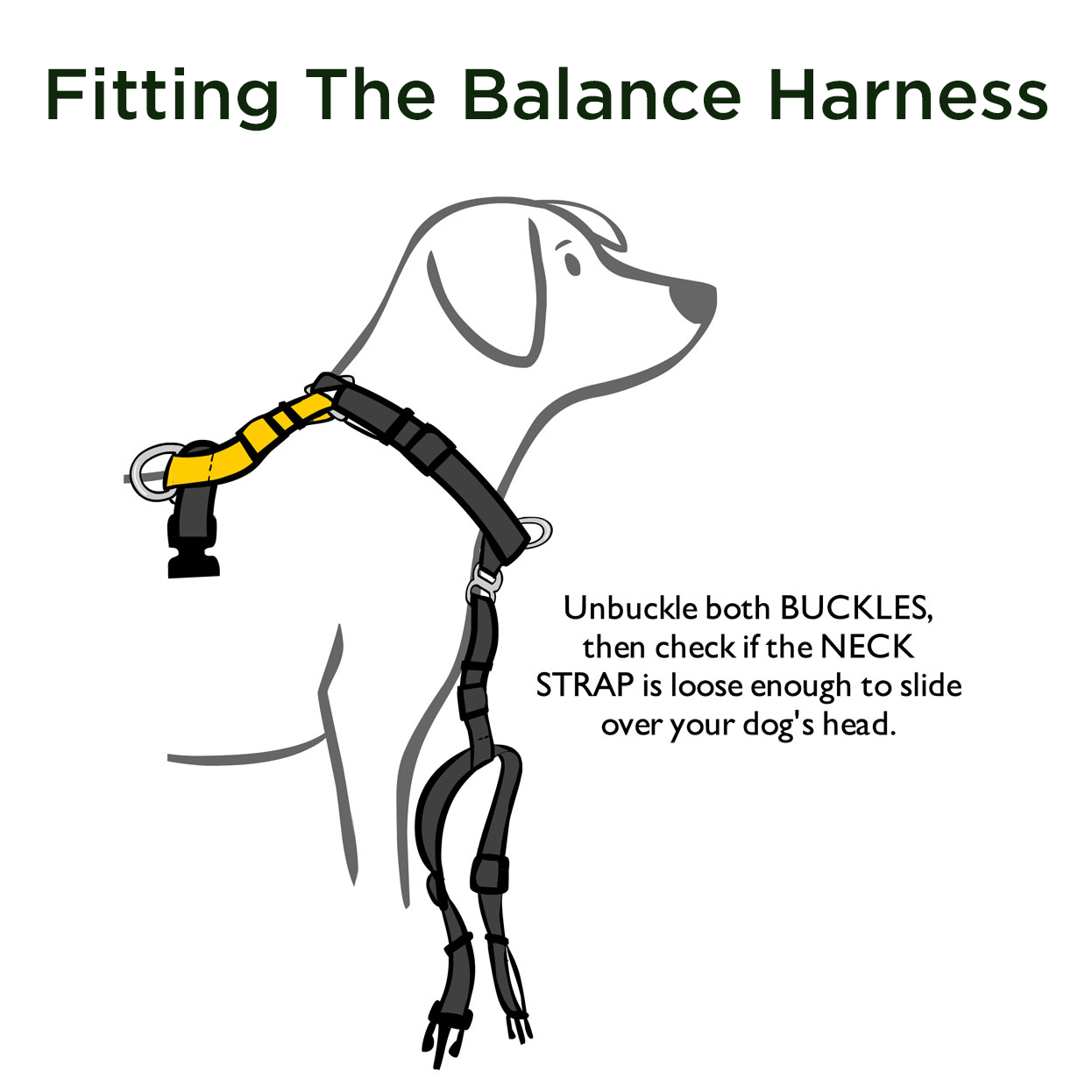 Balance Harness Blue 9 Pet Products