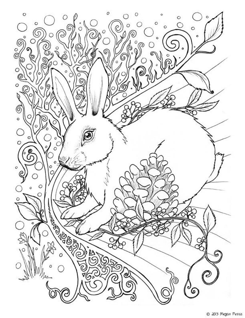 Pin On Art Prints And Coloring Books