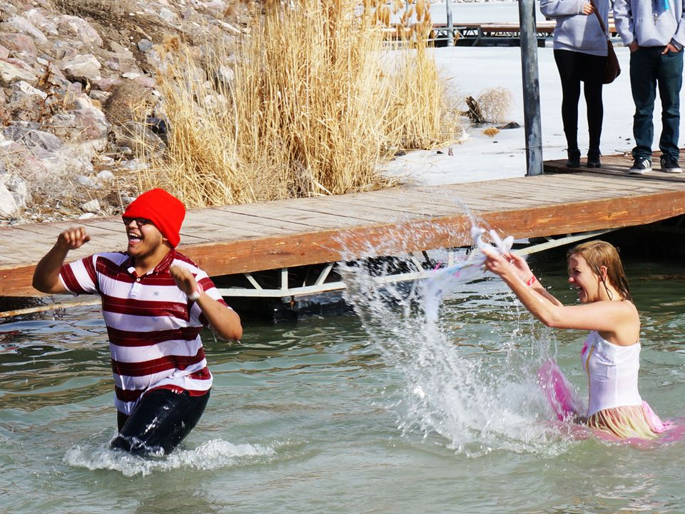 Anyone see Waldo? Polar Plunge 2014. Read about it: http://www ...
