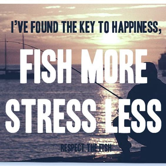 Respect The Fish Facebook Google Search Fishing Quotes Fishing Humor Fly Fishing