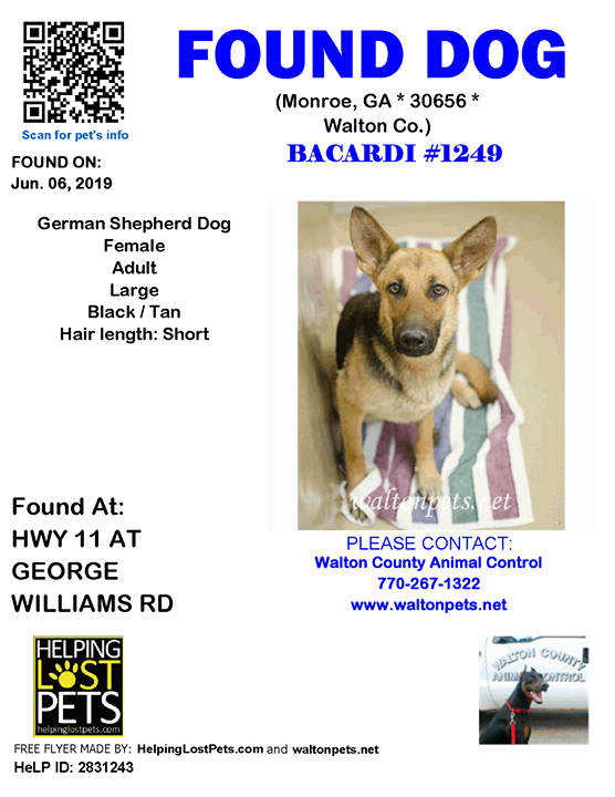 Do You Know This Dog Monroe Hwy 11 At George Williams Rd Ga