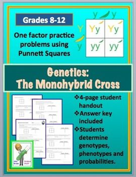 Monohybrid Cross Punnett Square Worksheet | Teaching ...