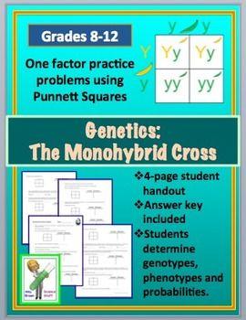monohybrid cross worksheet basic the o 39 jays and squares. Black Bedroom Furniture Sets. Home Design Ideas