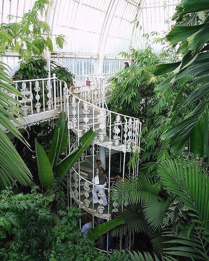 Image result for palm house kew gardens | London trips | Pinterest ...