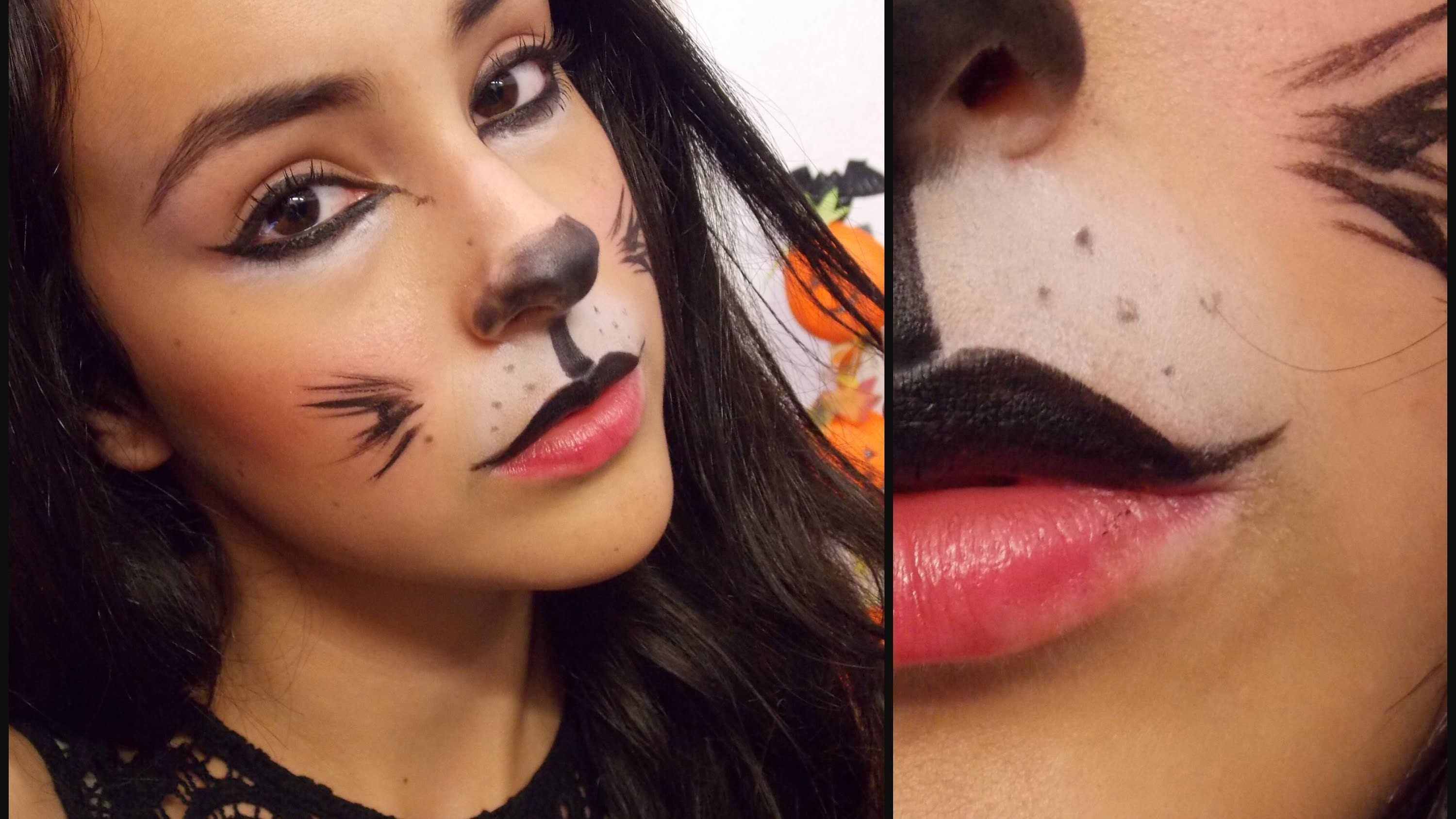 cat in the hat dress up ideas | last minute cat halloween makeup