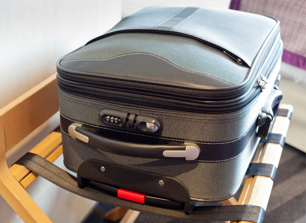 How to Check for Bed Bugs in a Hotel Best luggage brands