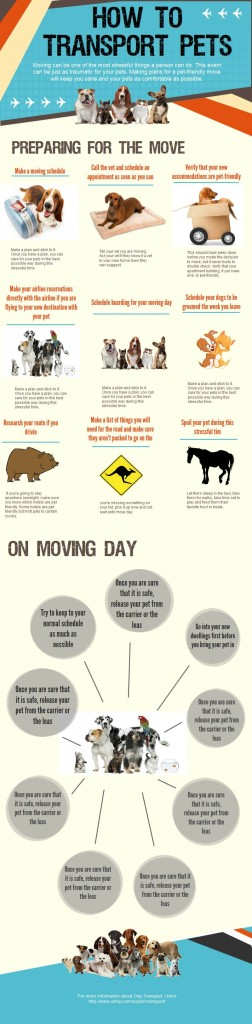 How To Transport Pets On Moving Day Dog Infographic Pets Pet Care Tips