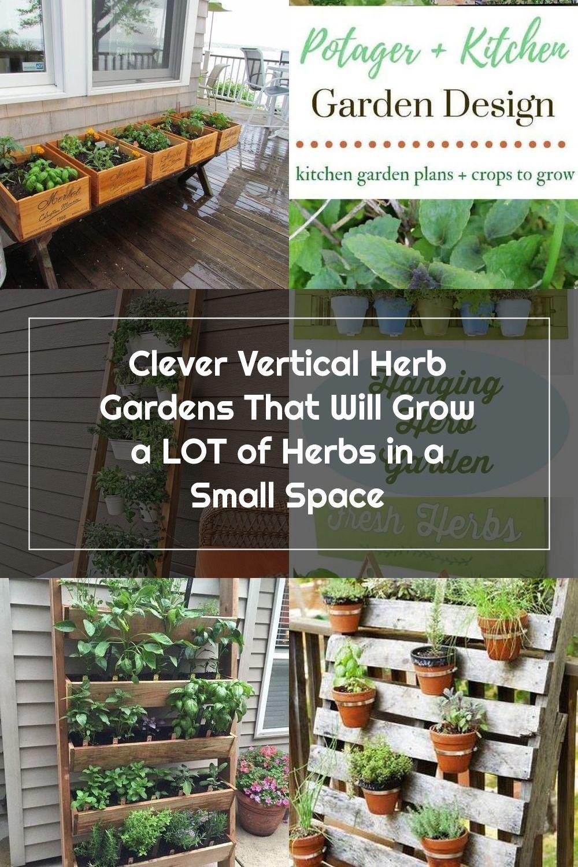 Pin On Herb Garden Design