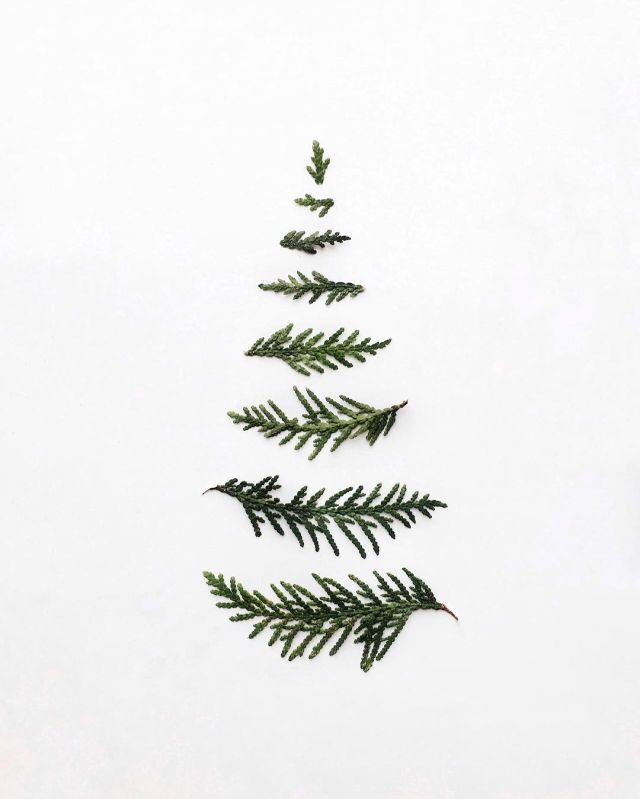 minimalist christmas tree wallpaper