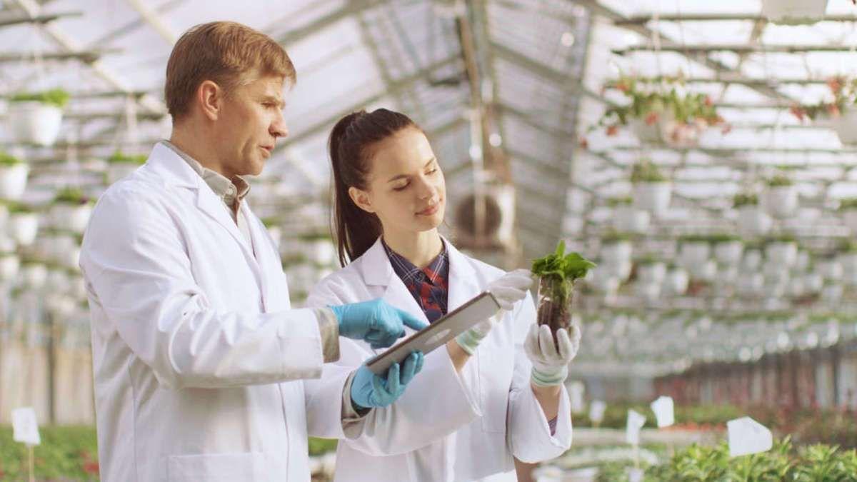 University of Hyderabad Jobs Biochemistry & Biotechnology