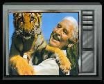Watch Classic 1970's Television Shows