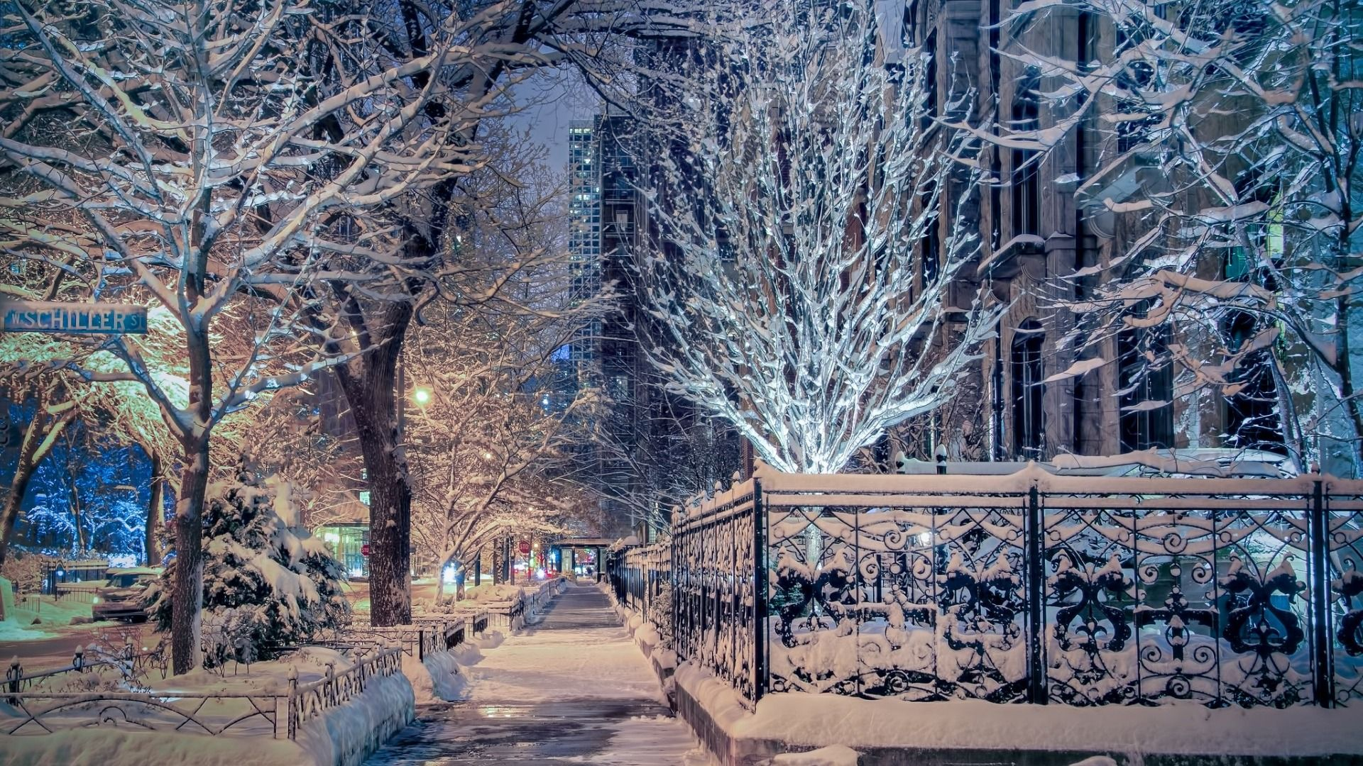 Download wallpaper Il, street, Illinois, Chicago, trees