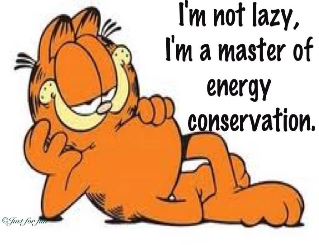 Ha i knew i was really being productive all that time - Funny garfield pics ...