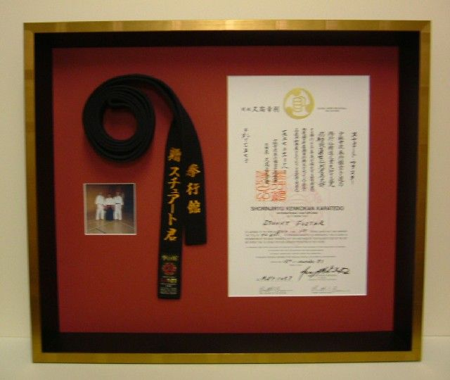 Best 25 Karate Belt Display Ideas On Pinterest Martial