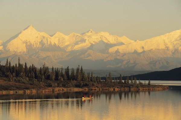 Alaska is known as America's last frontier, and Denali is at the center of this incredible oasis. Visitors can stay at one of seven campgrounds throughout the park and bear witness to a pristine landscape with glacial mountain ranges, alpine forests and clear rivers and lakes. The wildlife in Denali is rampant with black bears, grizzlies, moose, sheep, marmots, wolfs and loads of other animals.