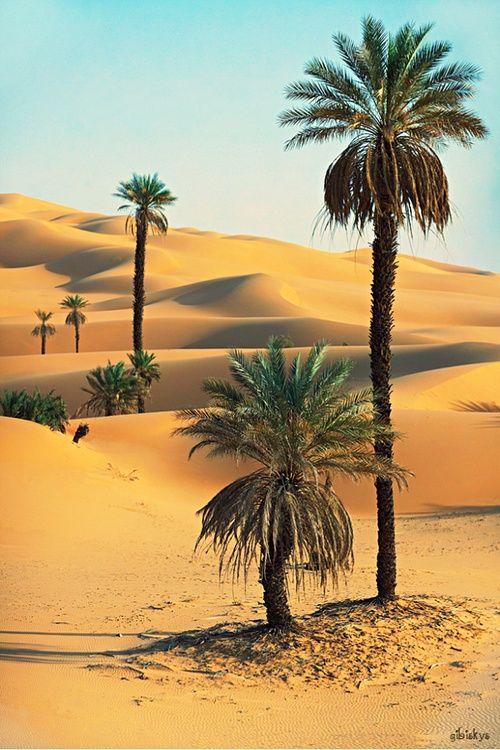 The Sahara Desert is a destination I wish to venture to