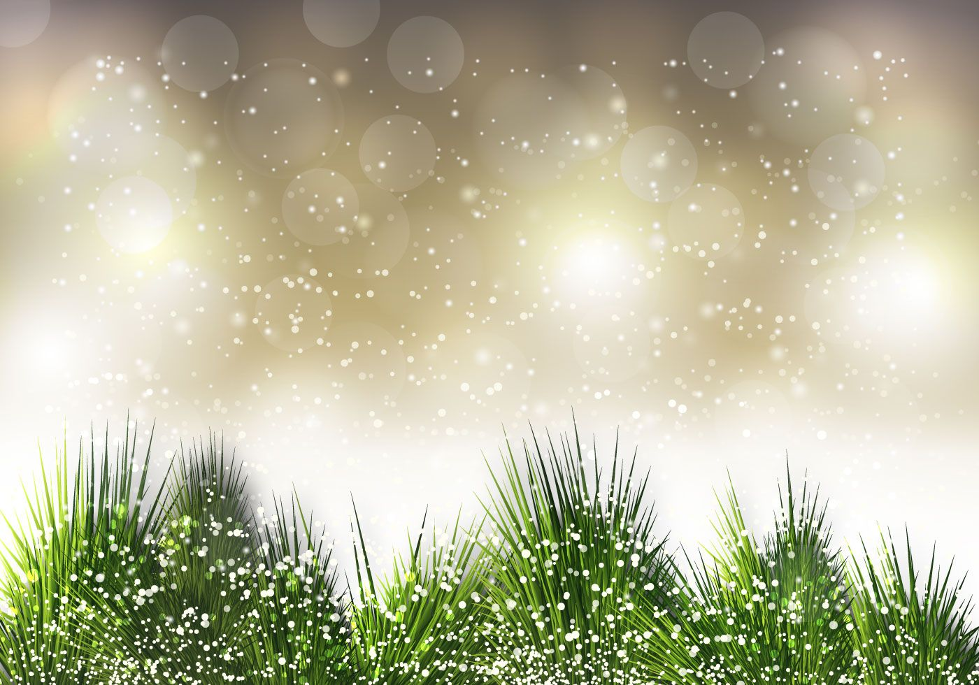Free Christmas Pine Needle Vector (With images) Vector