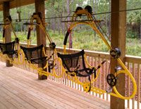 Cypress Canopy Cycle by Florida EcoSafaris...sooo cool! & Cypress Canopy Cycle by Florida EcoSafaris...sooo cool! | Places I ...
