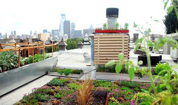 Now Approaching The Emerald City Modern Landscaping Small Backyard Backyard