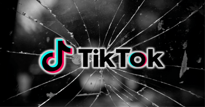 Tik Tok app is blocked in India after Google complies with