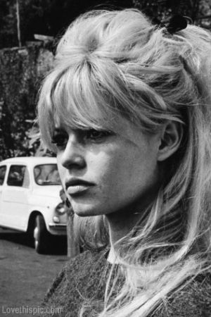 Bridget Bardot hair celebrity movies actress style icon sexy symbol famous star-diggin on the hair