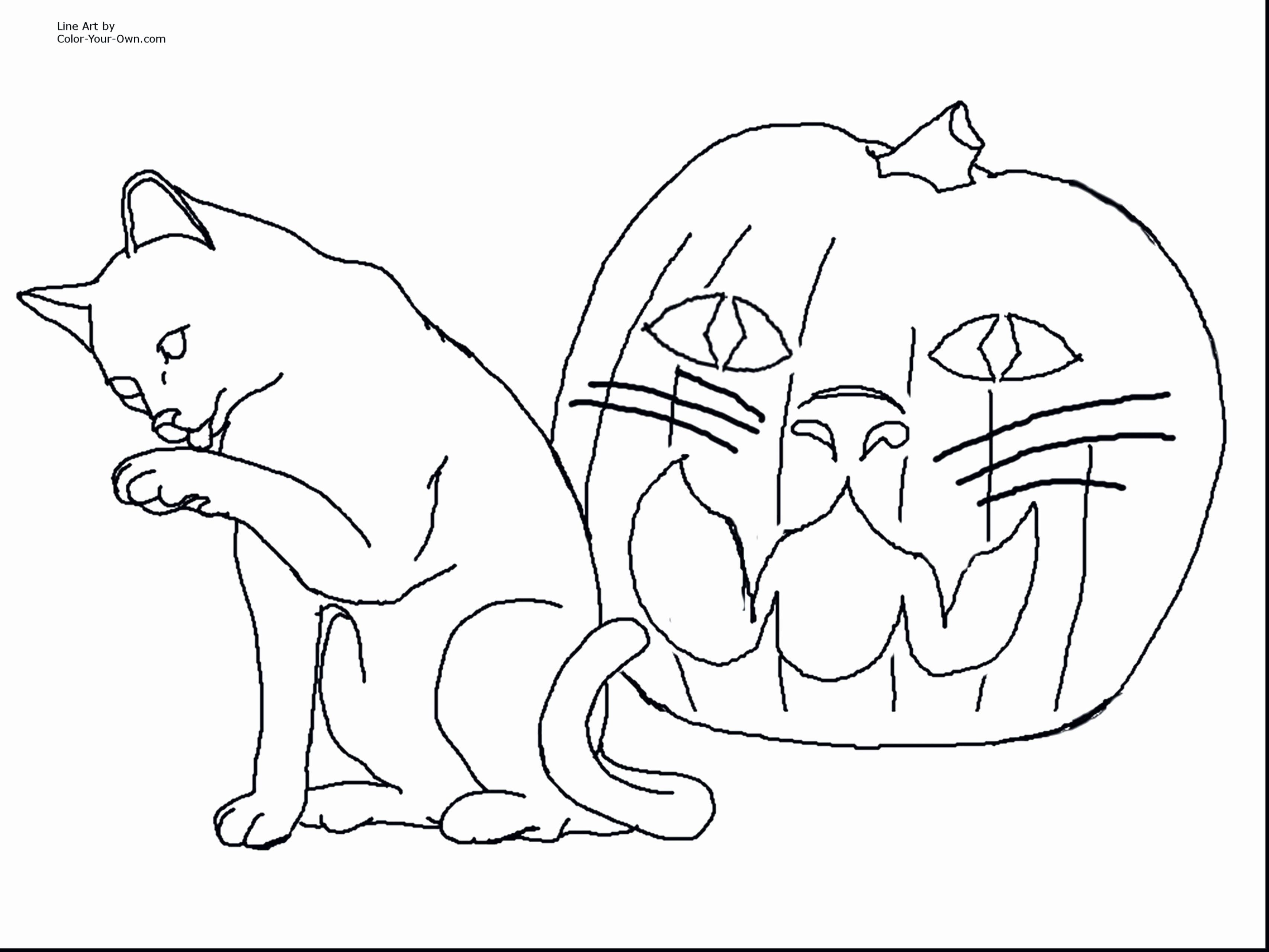 Australian Animals Coloring Page Luxury Coloring Book Dog Colouring Pages Printable Coloring Booke Nyan Cat Beautiful [ 2560 x 3412 Pixel ]