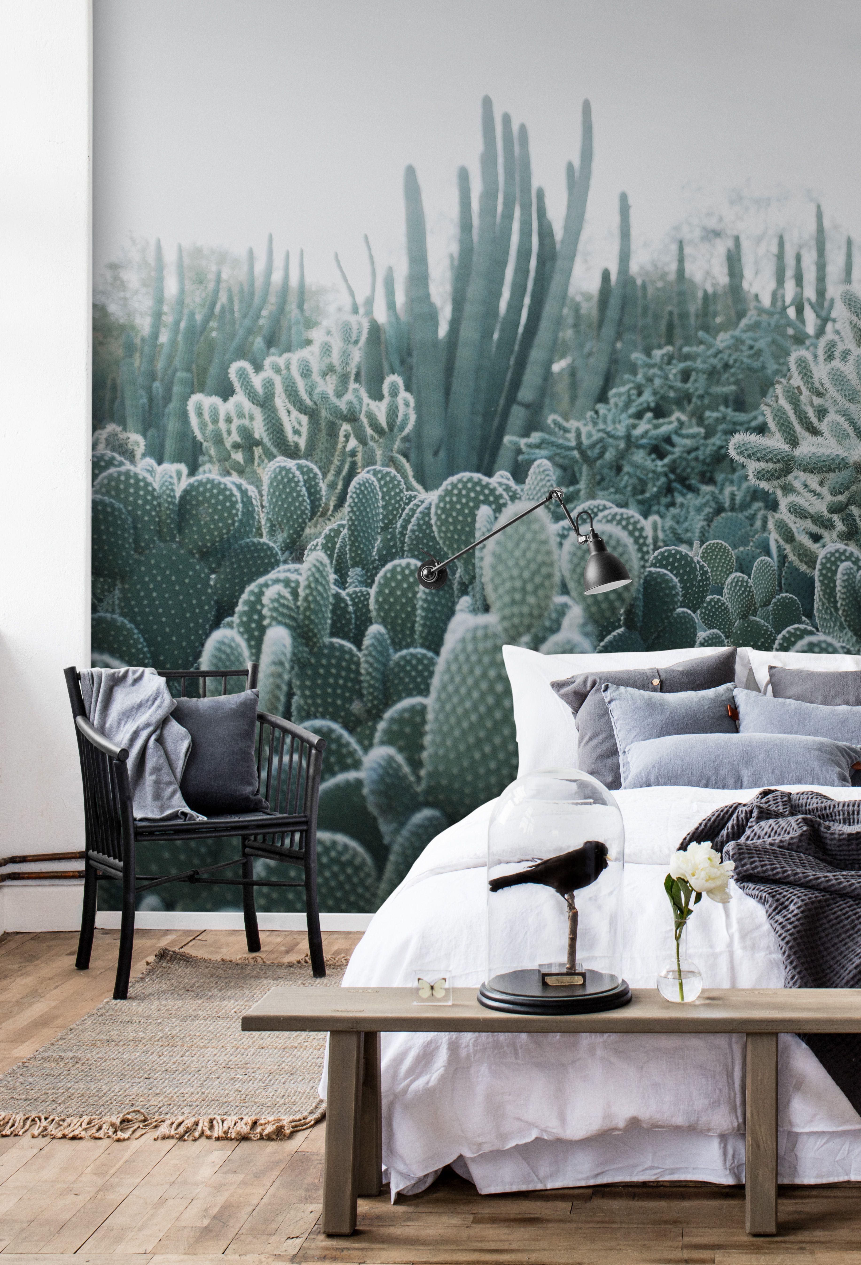 Cacti | Tapeten für\'s Schlafzimmer | Pinterest