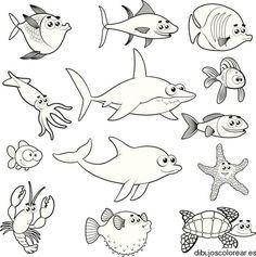 Animales Marinos Para Colorear Imprimir Imagui Fishing Humor Fish Drawings Fish Vector