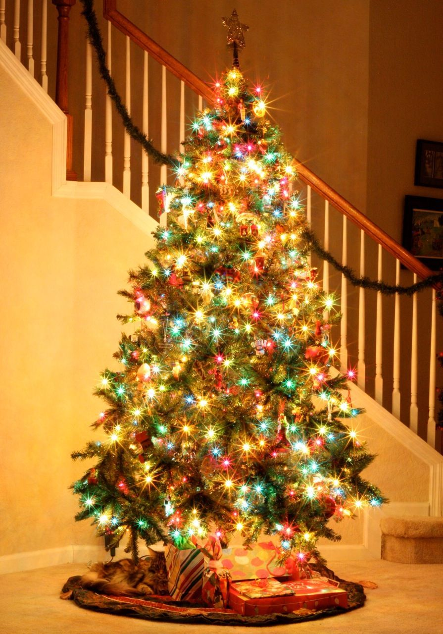 Easily take pretty pictures of your twinkling Christmas ...