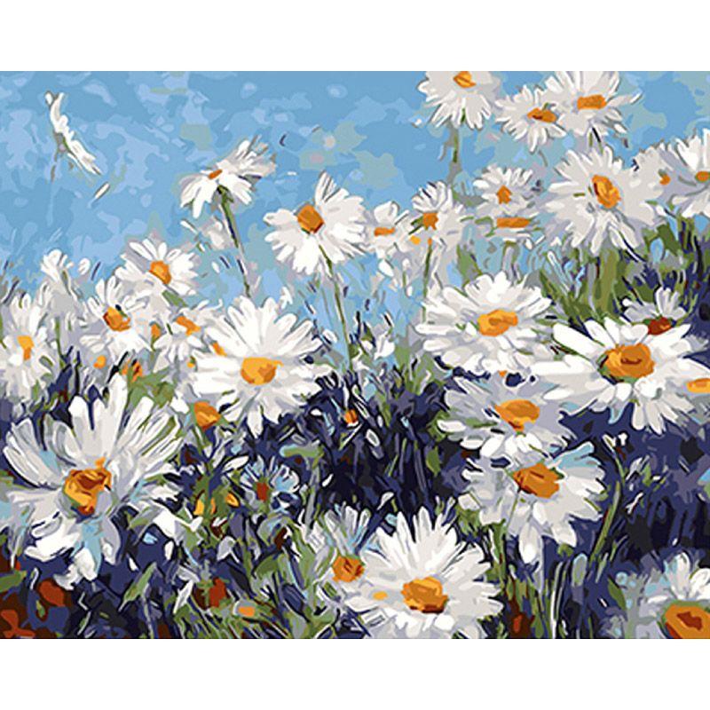 Blanco sin marco Flores DIY Pintura Por Números Regalo Único de la ...