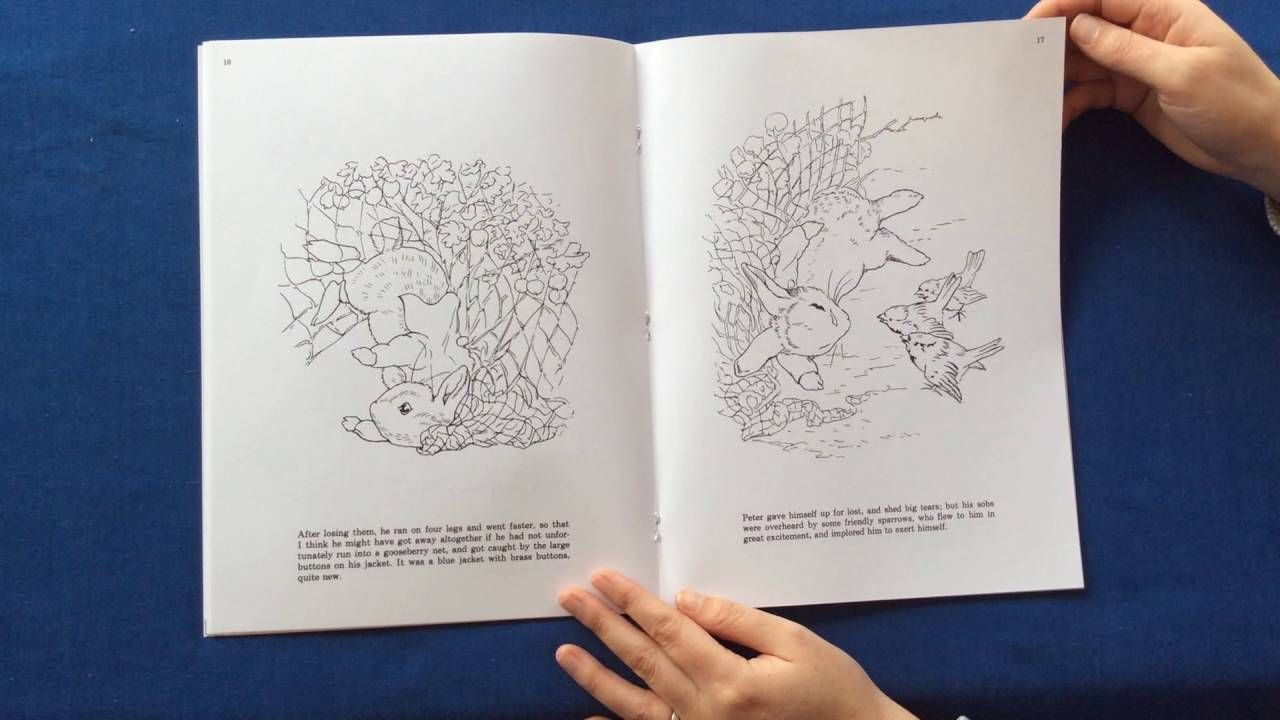 - The Tale Of Peter Rabbit Colouring Book. Video Flip Through